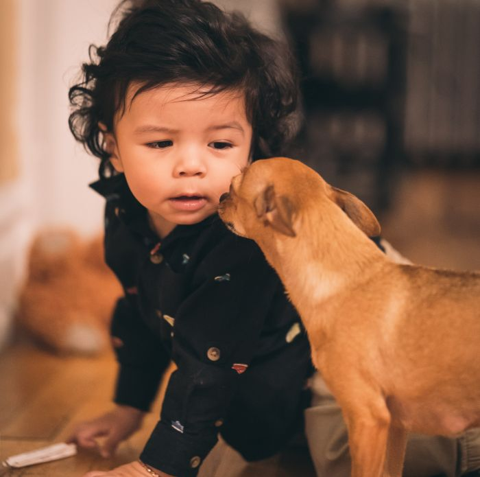 Copilul chinuie câinele și îi invadează spațiul de mâncare și somn