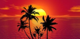 Greșeli care îți distrug vacanța